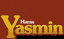 Haras Yasmin - Quarto de Milha YM